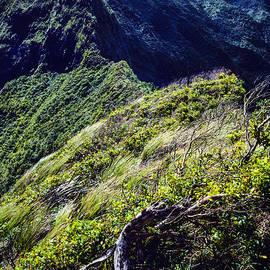 Thomas R Fletcher - Koolau Mountains
