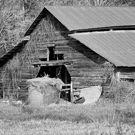 Kim Hojnacki - A Barn in Georgia