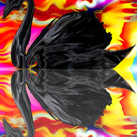 Abstract Angel Artist Stephen K - A Black Swan