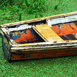 HQ Photo - A Boat on Amazon Green Swamp