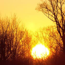 Daphne Sampson - A Brilliant Winter Sunset