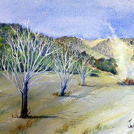 Janice Sobien - A Burn Near Lakeport, California
