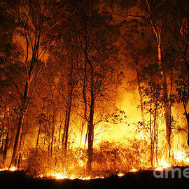 A bushfire burning orange and red at night. - Peter J Wilson