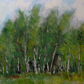 David Patterson - A Cluster of Birch
