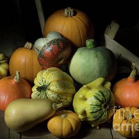 Ann Garrett - A Crate of Pumpkins