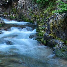Jeff Swan - A curving stream