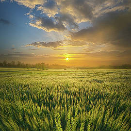 Phil Koch - A Day in the Life