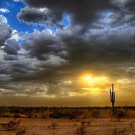 Saija  Lehtonen - A Desert Storm Sunset