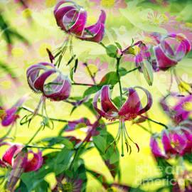 Denise Woldring - A Flowers Dream