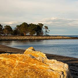 Nancy  de Flon - A Golden Rock on the New Hampshire Seacoast