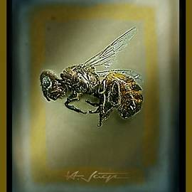 Hartmut Jager - A Humble Bee Remembered