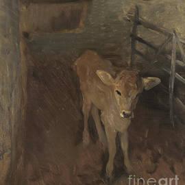 A Jersey Calf, 1893 - John Singer Sargent