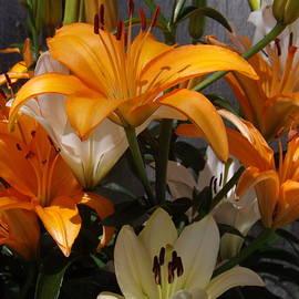 Lorna Hooper - A Lily Bouquet