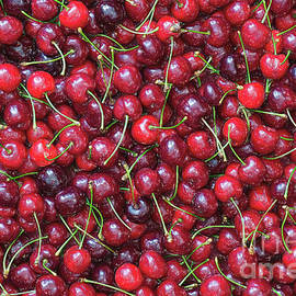A Lotta Cherries - Tim Gainey