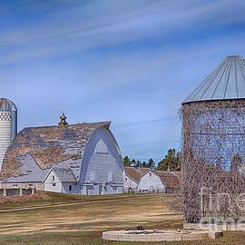 Priscilla Burgers - A Lovely Minnesota Farm
