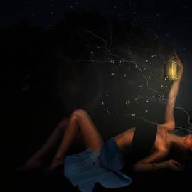 Terry Fleckney - A Midsummer Nights Dream