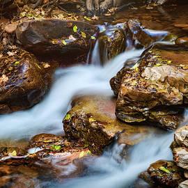 Saija Lehtonen - A Mountain Stream