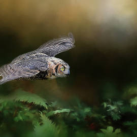 Jai Johnson - A Night With The Great Horned Owl 1 by Jai Johnson