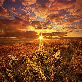 Phil Koch - A Part Of Everything