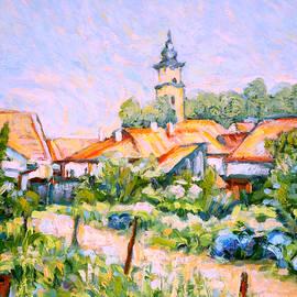 Dusan Balara - A Path Through Garden