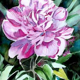 Mindy Newman - A Pink Peony