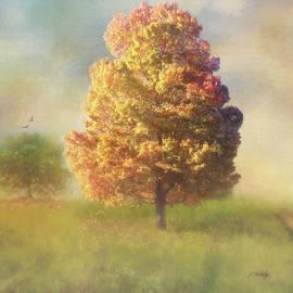Jordan Blackstone - A Poem As Lovely As A Tree - Autumn Art