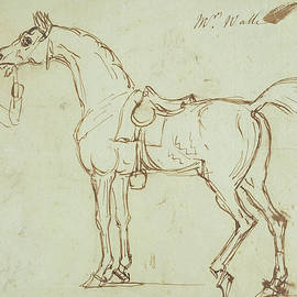 A Racehorse, Bridled and Saddled  - James Seymour