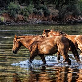 Saija Lehtonen - A River Crossing