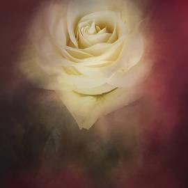 Jai Johnson - A Rose For My Valentine