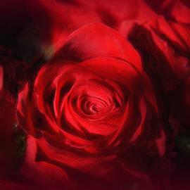 Tricia Marchlik - A Rose Is A Rose