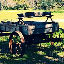 Gary Richards - A Rural Wagon