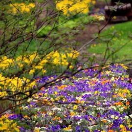 Rosanne Jordan - A Sense of Spring