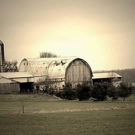 A Shreve Holstein Farm