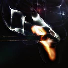 Jean Francois Gil - A single match, A single fire.