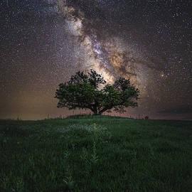 Aaron J Groen - A Sky Full Of Stars