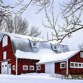 Betty Denise - A Snowy Day at Grey Ledge Farm
