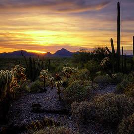 A Southern Arizona Sunset