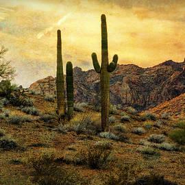 Saija Lehtonen - A Southwest Desert Evening