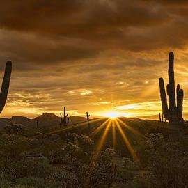 Saija  Lehtonen - A Southwestern Sunrise