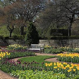 Rosanne Jordan - A Spring Day at Cantigny Gardens