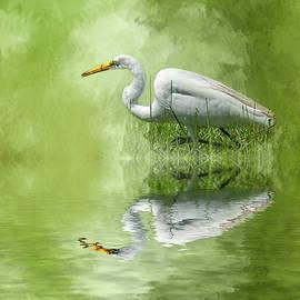 Cyndy Doty - A Walk in the Marsh