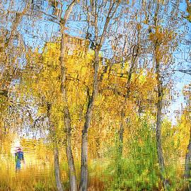 Michael  Scott - A Walk In The Park