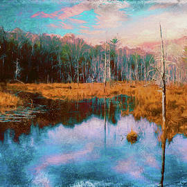 Rusty Smith - A Wilderness Marsh