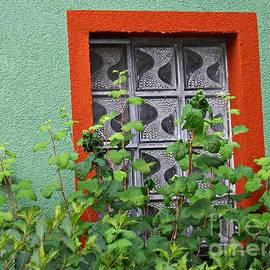 Sarah Loft - A Window in Schierstein