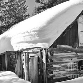 Tonya Hance - A Winter Home 3