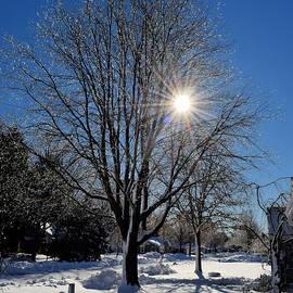 George Martinez - A Winter Morning