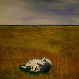 Olga Zavgorodnya - A Wolf Story