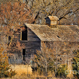 Elizabeth Winter - Abandoned and Forgotten