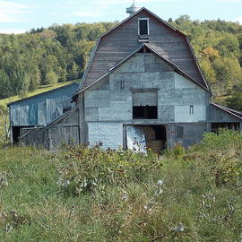 Catherine Gagne - Abandoned Barn