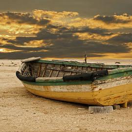 Nelieta Mishchenko - Abandoned boat